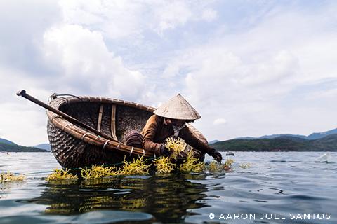 Vietnam Fishing Boat - Copyright Aaron Joel Santos